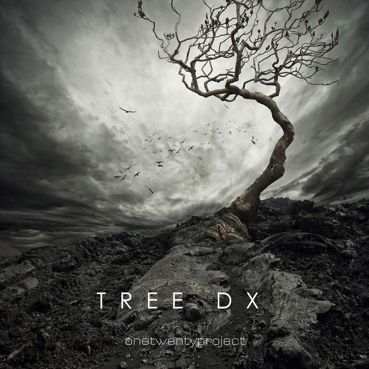 Tree DX Instrumental